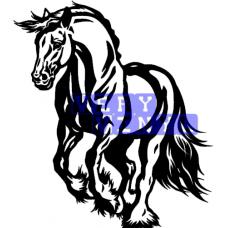 Gypsy Cob Horse 2