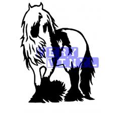 Gypsy Cob Horse 3