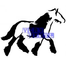 Gypsy Cob Horse 4