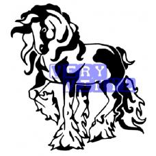 Gypsy Cob Horse 6