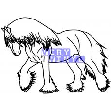 Gypsy Cob Horse 8