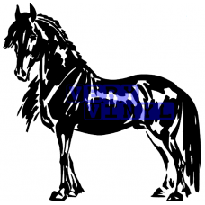 Friesian Horse 4