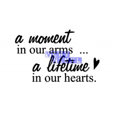 A Moment in Our Arms - A Lifetime in Our Hearts