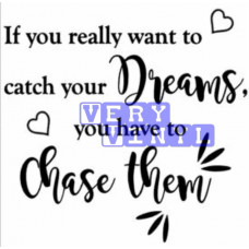 If You Really Want to Catch Your Dreams - Chase Them