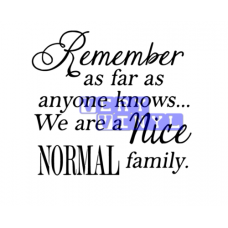Remember as Far as Anyone Knows - Nice Normal Family